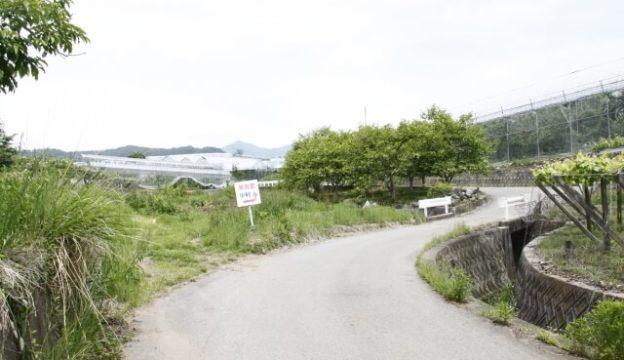 山梨の道路